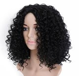 Afro Kinky Curly Synthetic Wig 20 inch_
