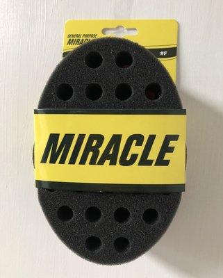 General Purpose Miracle Sponge Brush