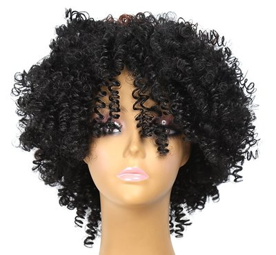 Afro Kinky Curly Wig 8-10 inch