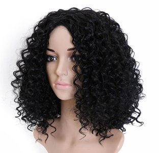 Afro Kinky Curly Synthetic Wig 20 inch