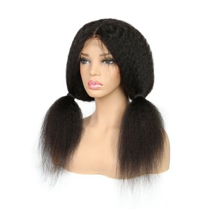 Brazilian Remy Kinky Straight Lace Front Wig